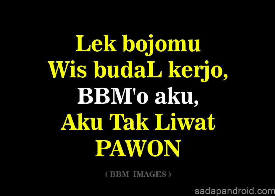 gambar dp bbm kata kata bahasa jawa ngapak lucu_029 - Sadap Android