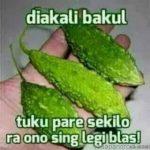 Gambar Dp BBM Bahasa Jawa Ngapak Lucu Banget Ngakak